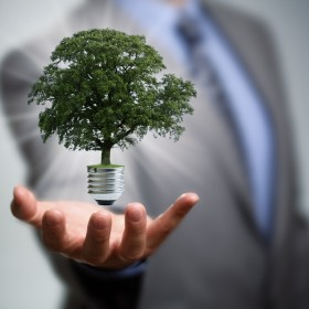 How to make your business carbon friendly