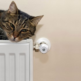 Winter Heating Guide - Gas Heating